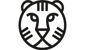 International Film Festival - IFFR (23 jan - 3 feb 2019)
